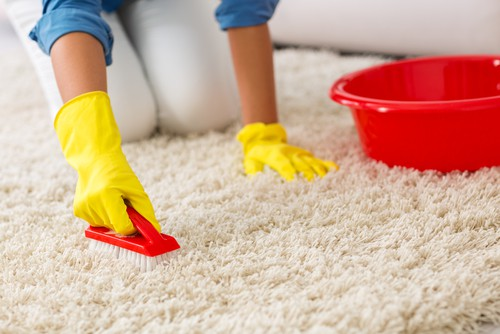 2021 Guide To Cleaning Carpet Yourself